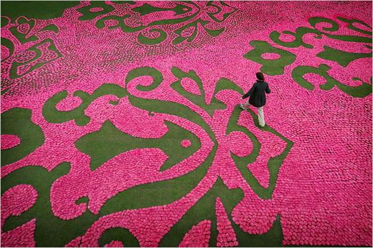 """艺术家们的创作的""""花地毯"""""""